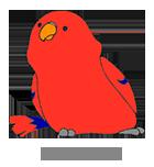 小鳥の飼い方